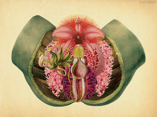 VULVA POWER- a day to celebrate, honour and affirm your genitals